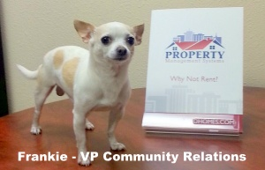 Frankie - VP Community Relations